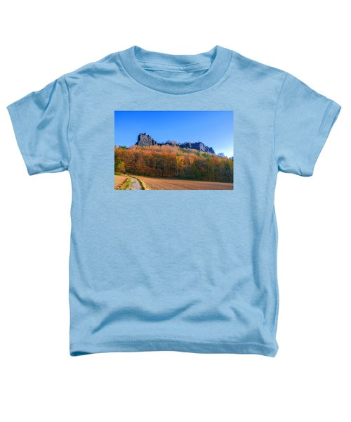 Fall Colors Around The Lilienstein Toddler T-Shirt