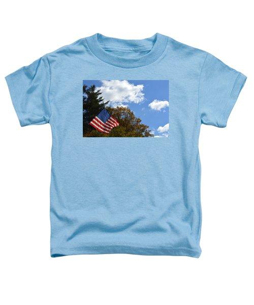 Fall Flag Toddler T-Shirt