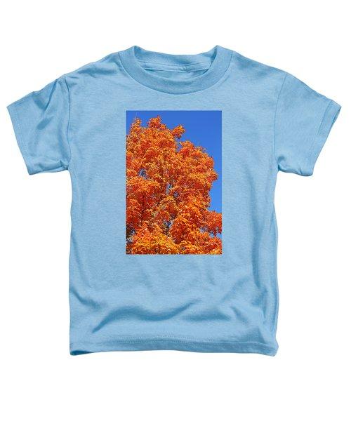 Fall Foliage Colors 18 Toddler T-Shirt