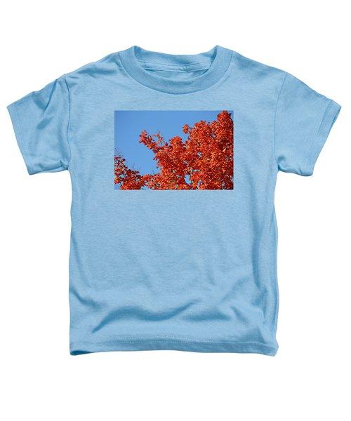 Fall Foliage Colors 20 Toddler T-Shirt