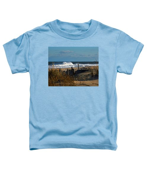 Fenwick Dunes And Waves Toddler T-Shirt