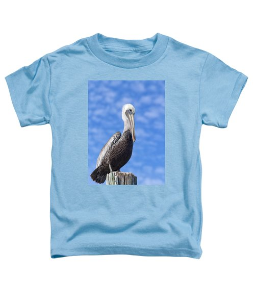 Florida Brown Pelican Toddler T-Shirt