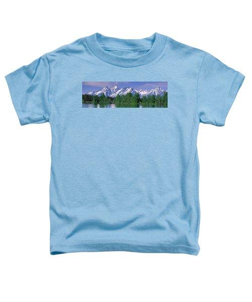 Grand Tetons National Park Wy Toddler T-Shirt