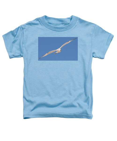 Gull In Flight  Toddler T-Shirt