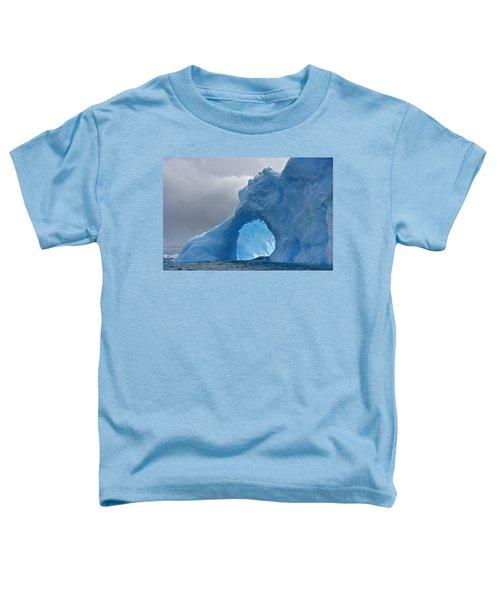 Inner Mounting Flame Toddler T-Shirt