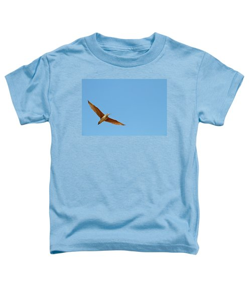 Long-billed Curlew In Flight Toddler T-Shirt