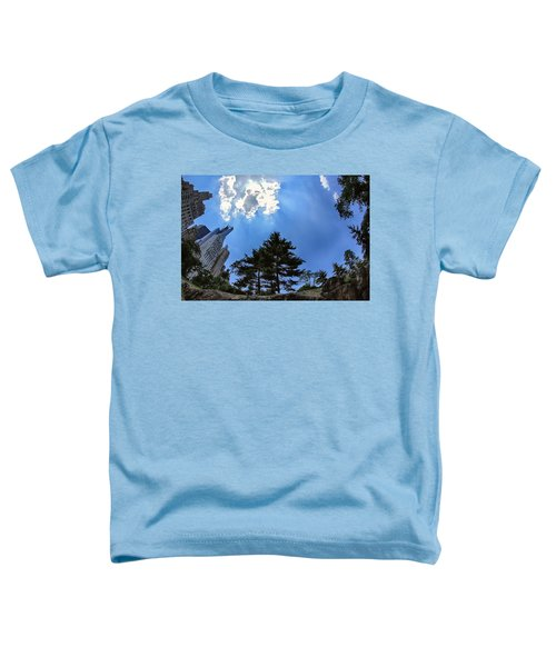 Long Way Up Toddler T-Shirt