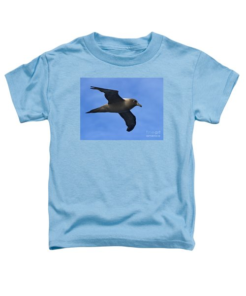 Pelagic Seabird... Toddler T-Shirt by Nina Stavlund