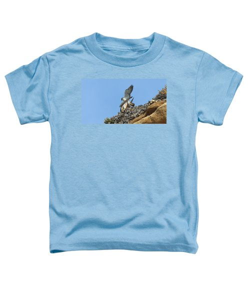 Peregrine Falcons - 5 Toddler T-Shirt