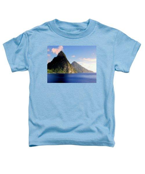 Splendor  Toddler T-Shirt