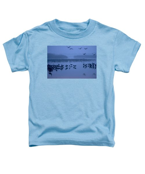 Sunrise Over The Hula Valley Israel 4 Toddler T-Shirt