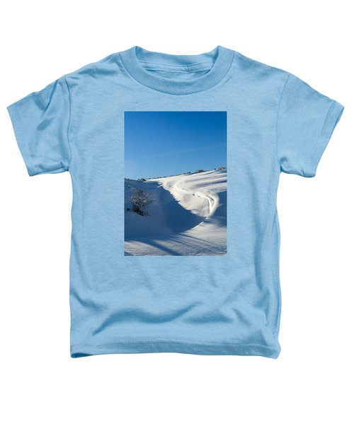 The Colors Of Snow Toddler T-Shirt