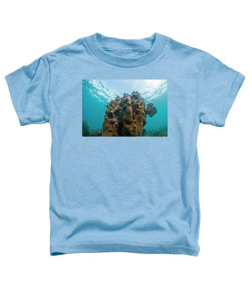 Underwater Life, Including Hard Corals Toddler T-Shirt