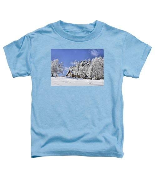 Vermont Winter Beauty Toddler T-Shirt
