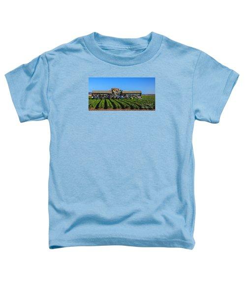 Winter Lettuce Harvest Toddler T-Shirt by Robert Bales