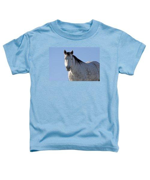 Winter Pony Toddler T-Shirt
