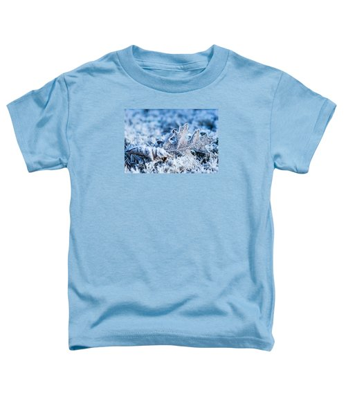 Winter's Icy Grip Toddler T-Shirt