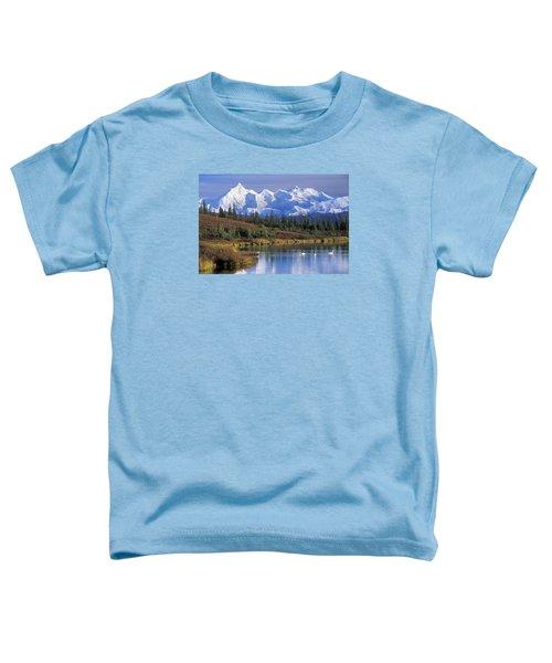 Wonder Lake 2 Toddler T-Shirt