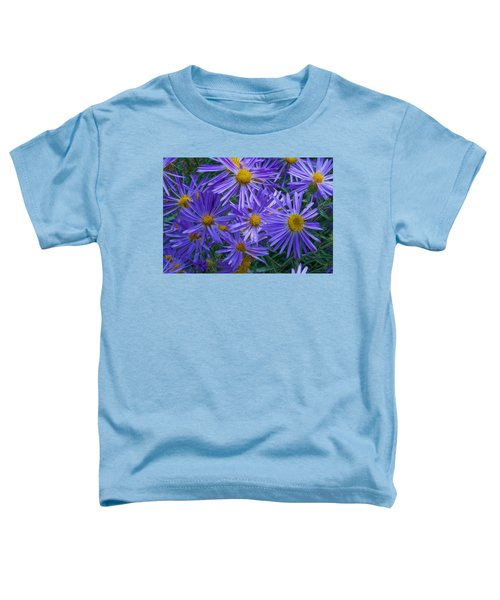 Blue Asters Toddler T-Shirt
