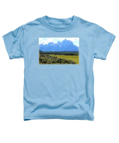Grizzly Country With Soft Vignette Toddler T-Shirt