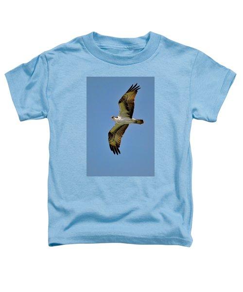 Osprey Above Toddler T-Shirt