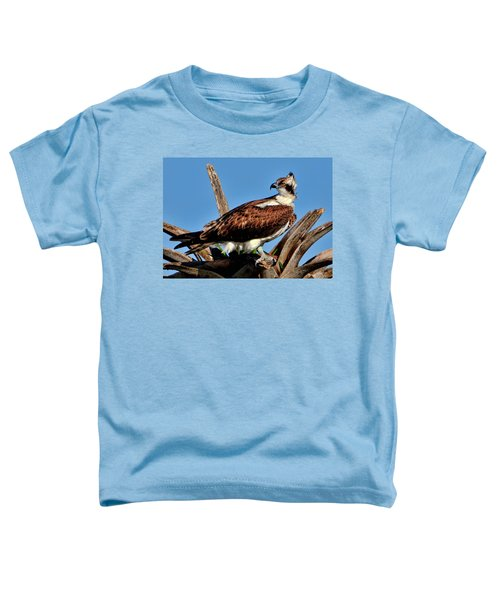 Osprey On A Windy Morning Toddler T-Shirt