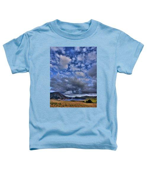 Twitchell Reservoir  Toddler T-Shirt