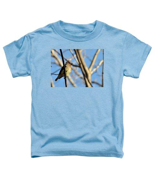 Cedar Wax Wing Toddler T-Shirt by David Arment