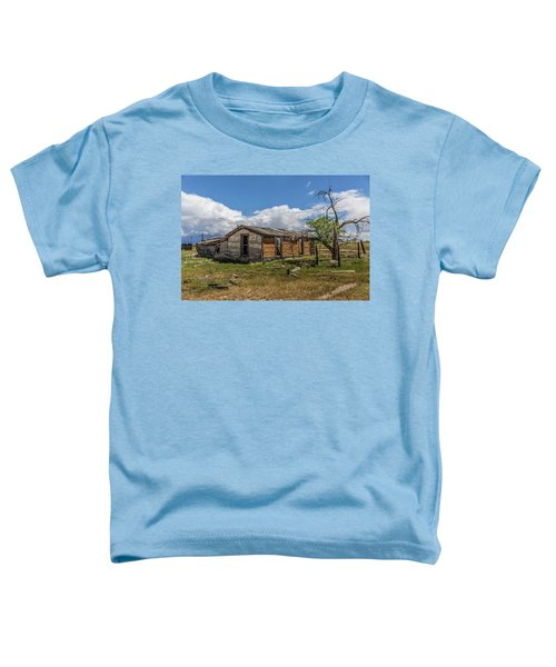 Cisco, Utah, Ghost Town Toddler T-Shirt