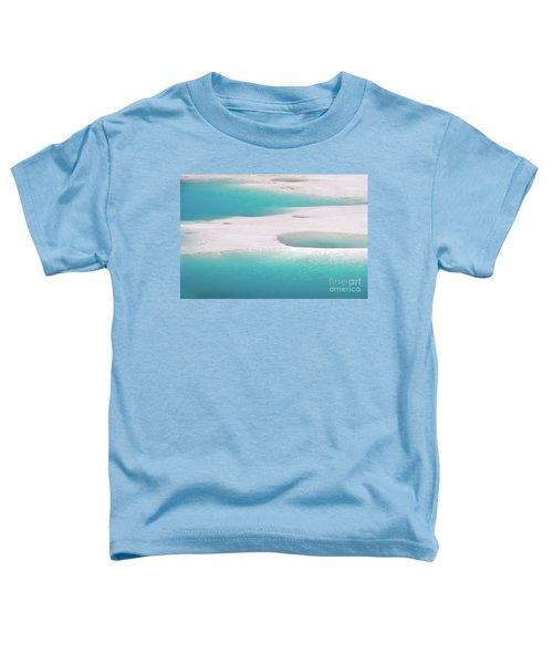 Porcelain Basin Toddler T-Shirt
