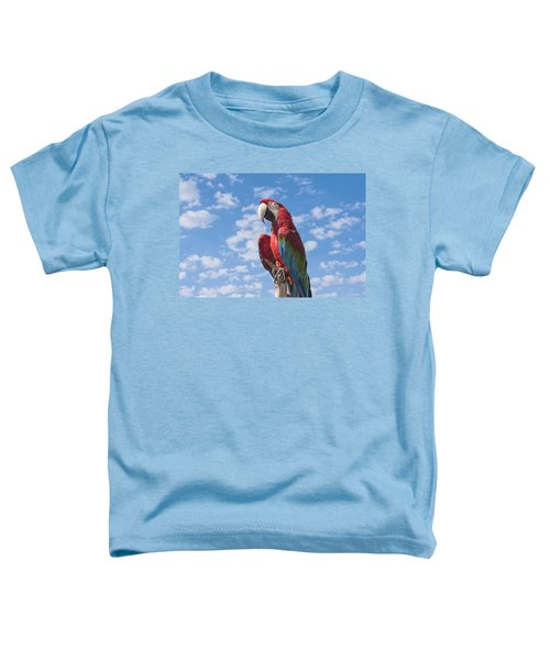 Scarlet Macaw Toddler T-Shirt