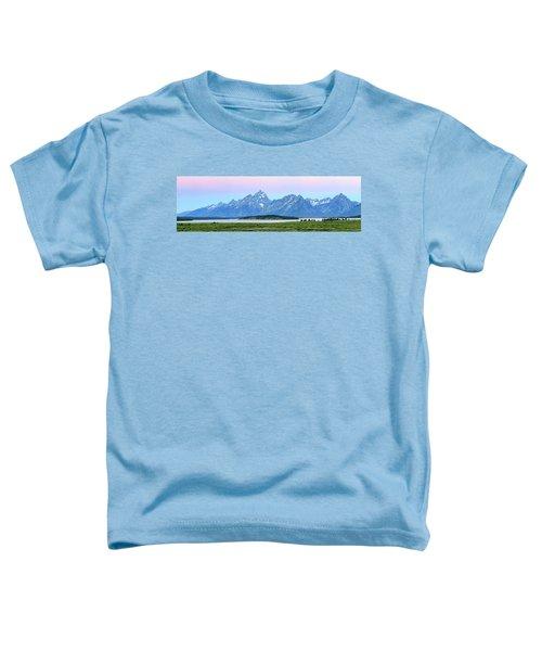 Spotless Sunrise Toddler T-Shirt