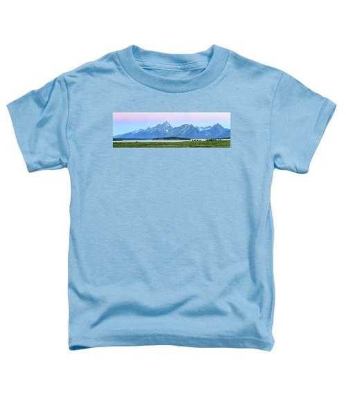 Spotless Sunrise Toddler T-Shirt