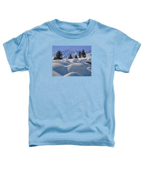2m6402 Mt. Tom From Sherwin Grade Toddler T-Shirt