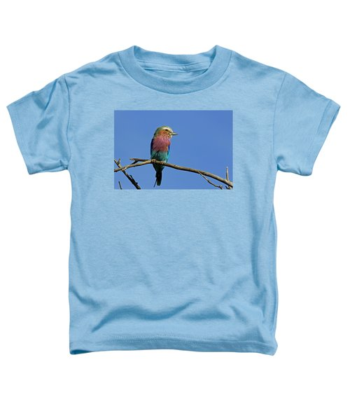 Lilac Breasted Roller Toddler T-Shirt