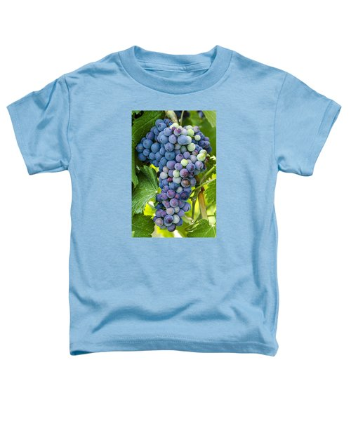 Red Wine Grapes Toddler T-Shirt