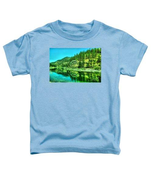 A Beautiful Stillness Toddler T-Shirt