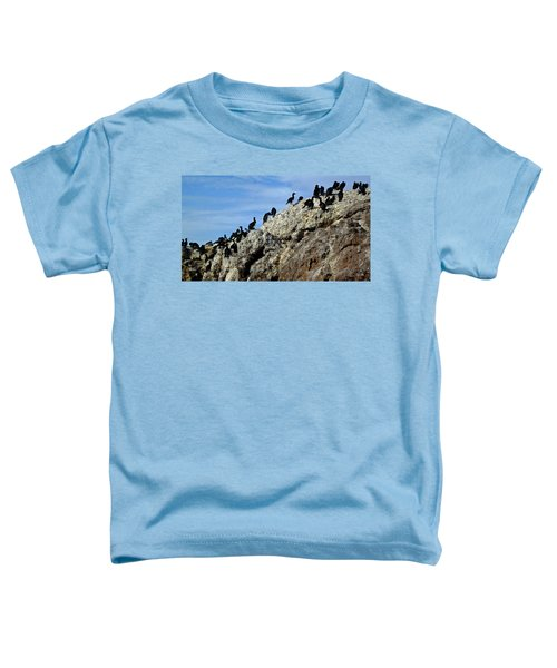 A Gulp Of Cormorants Toddler T-Shirt by Sandy Taylor
