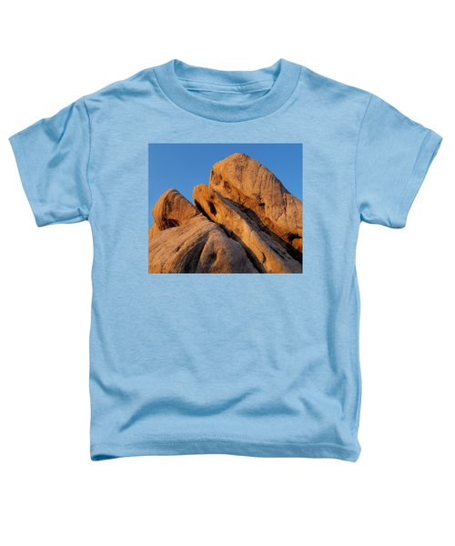 A Slanted View Toddler T-Shirt