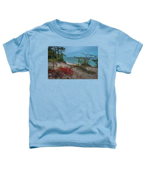 A Touch Of Color  Toddler T-Shirt