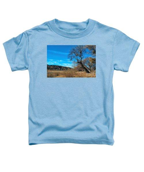 Forgotten Park Toddler T-Shirt