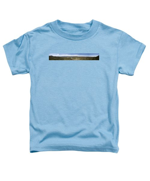 Aerial Pano Of Evergreen Toddler T-Shirt