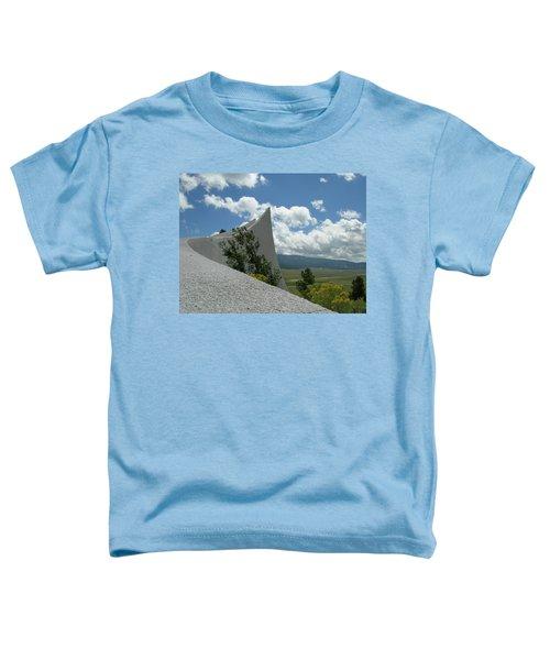 Angel Fire Toddler T-Shirt