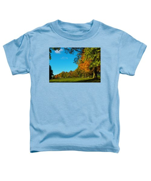 Autumn At World's End Toddler T-Shirt