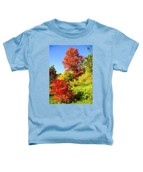 Autumn Colours Toddler T-Shirt