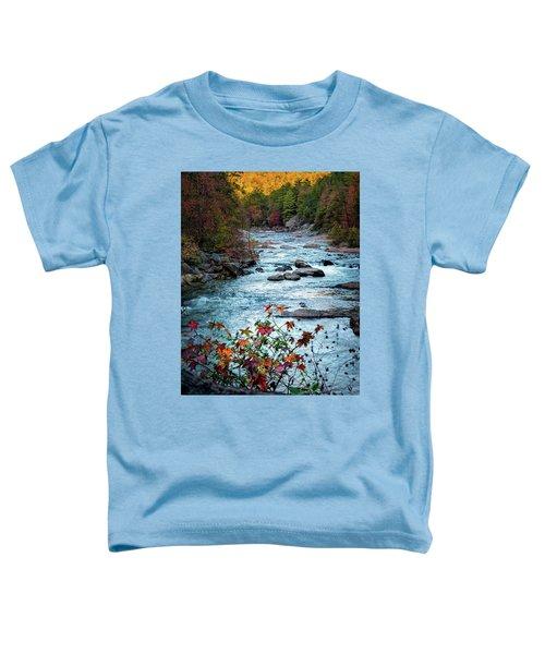 Autumn On Wilson Creek Toddler T-Shirt