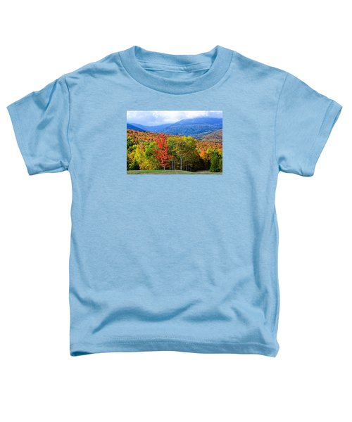 Autumn White Mountains Nh Toddler T-Shirt