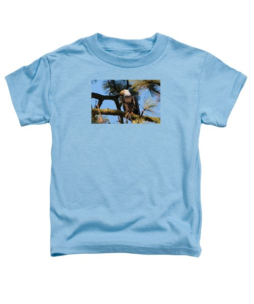 Bald Eagle Perch Toddler T-Shirt