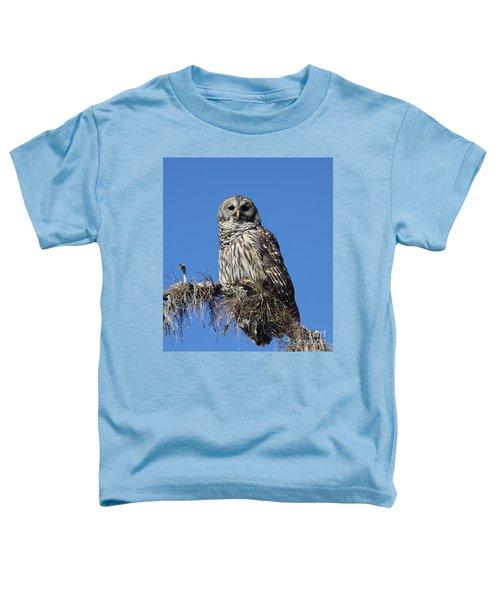 Barred Owl Portrait Toddler T-Shirt