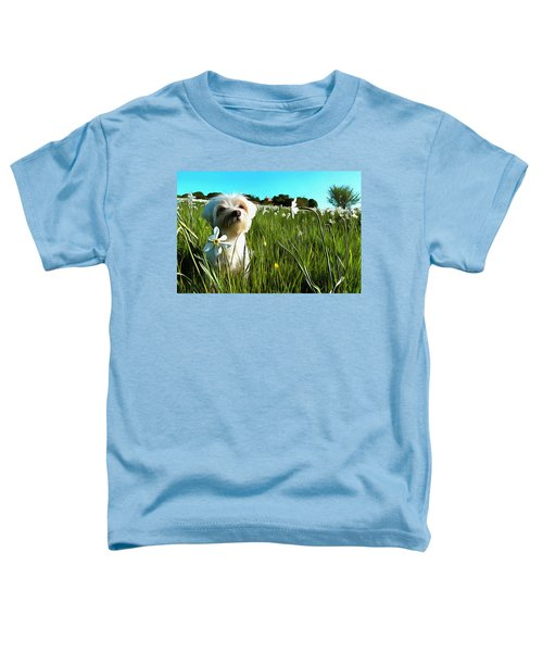 Blooming Daffodils In The Antola Park With Maltese I Paint Toddler T-Shirt